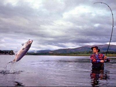 Сон ловить рыбу на удочку - значение