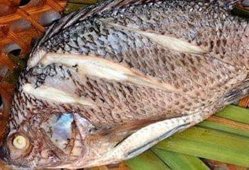 Целая вареная рыба во сне - что означает