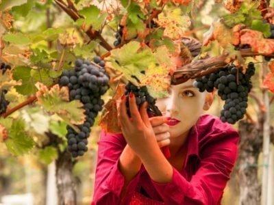 Сон про сбор винограда - значение