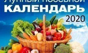 Лунный календарь посадок на май-июнь и весь 2020 год для садовода и огородника