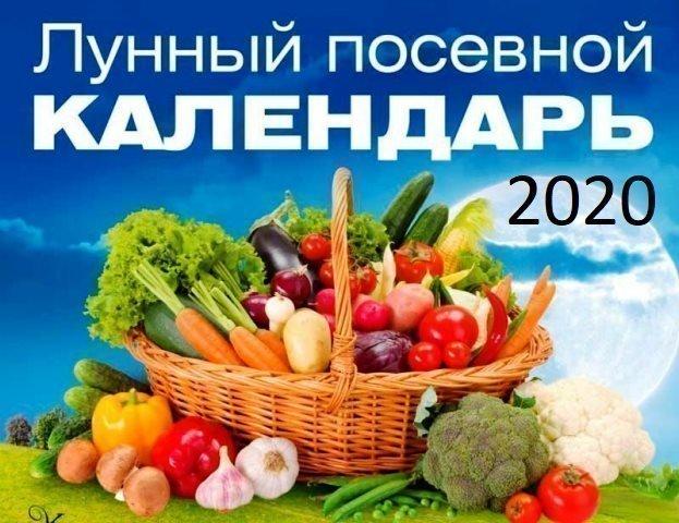 Лунный календарь огородника на 2020 год