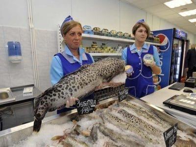Крупная рыба в магазине - толкование сна
