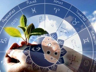 Влияние Зодиака на сад и огород