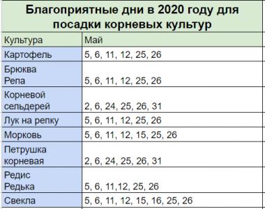 лунный календарь садовода и огородника на май 2020 года. Корневые культуры