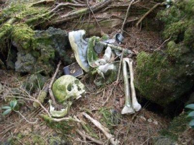 Труп в лесу - толкование сна