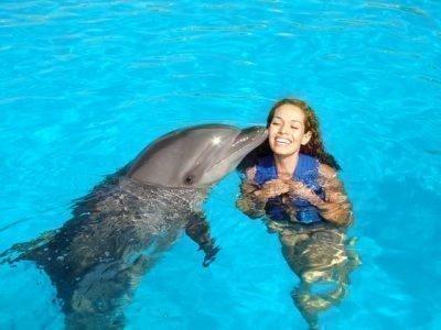 Дельфин приснился женщине