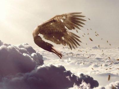 Полет с крыльями - толкование сна